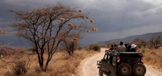 How to Keep Safe and Healthy on Safari in Kenya