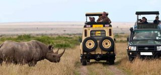 9 Days Best of Kenya Wildlife Safari